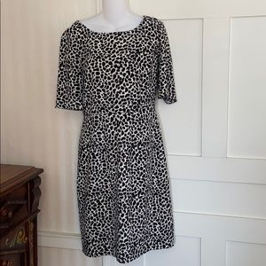 Talbots Animal Print Sheath Dress 3/4 Sleeves 12